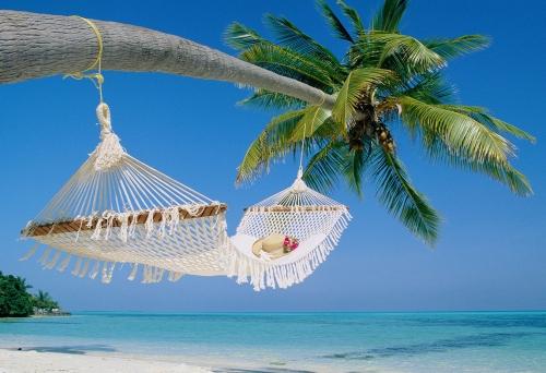 travel-business-hammock-beach1